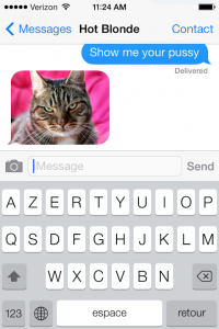 sexting-with-cat
