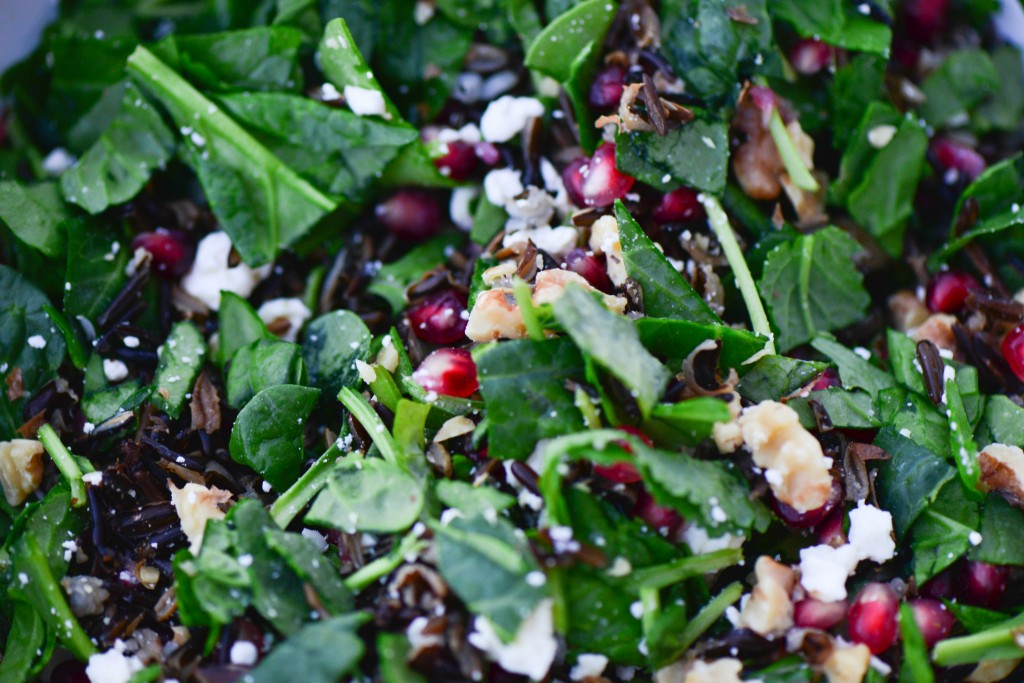 pomegranate-wild-rice-salad-3-of-3-1024x683