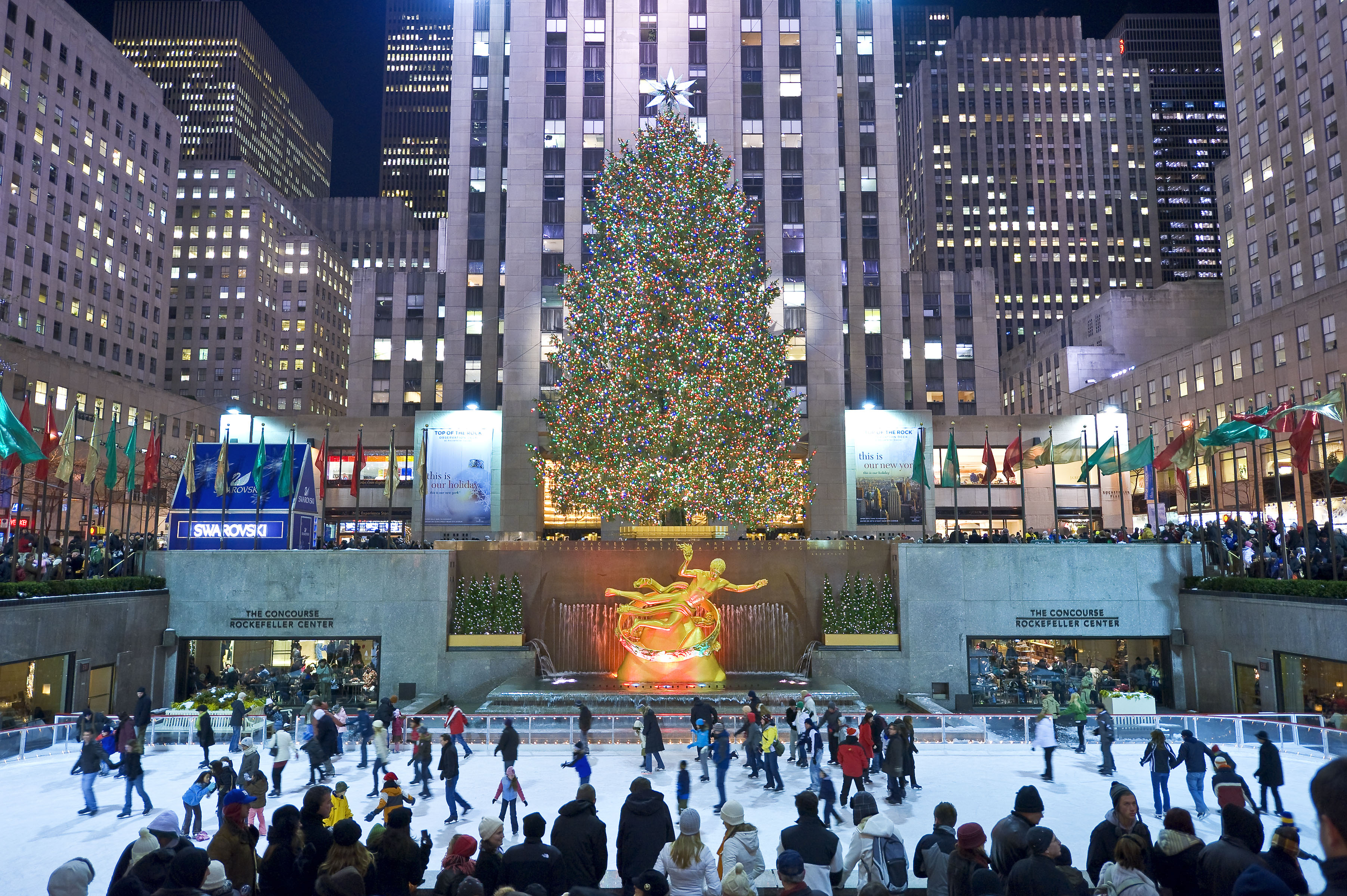 The 2008 Rockefeller Center Christmas Tree came from Hamilton, New Jersey. The '08 Tree was donated by the Varanyak family. Tree Facts from the 2008 Tree Facts Postcard (photo by Bart Barlow): Norway Spruce. 72 feet tall, 40 feet wide. Approximately 82 years old. Weight- approximately 16,000 pounds. 30,000 LED lights. (This was the second year that LED bulbs were used on the Tree). A portion of the electrical energy used to light the Tree came from a new installation of photovoltaic panels installed in 2007 on the roof of 45 Rockefeller Plaza. The Tree was topped with a crystal star designed by Swarovski. The 550 pound star is 9 feet in diameter and 1.5 feet deep. It is decorated with 25,000 crystals, with one million facets. The Tree was lighted on December 3, 2008. The Tree's last day on Rockefeller Plaza was January 9, 2009.